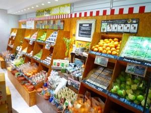 小田原の柑橘類、みかんハチミツ、そして化粧水!